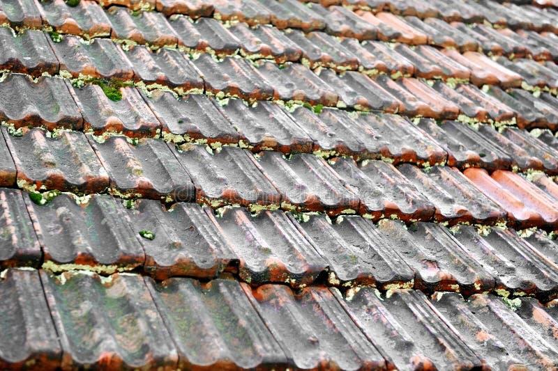 Vieux toit de tuile photographie stock libre de droits
