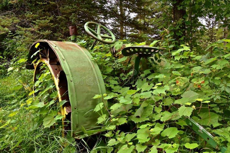 Vieux tracteur enterré dans les vignes photo libre de droits