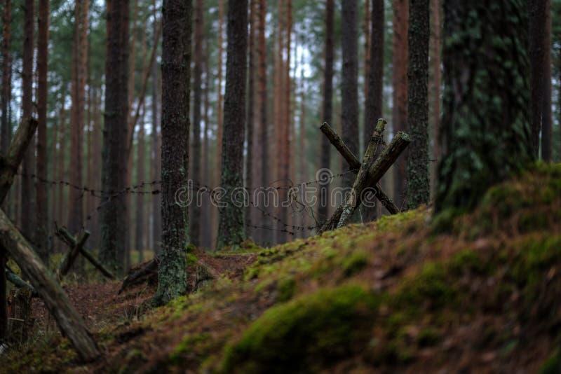 vieux trenshes en bois en Lettonie reconstruction de première guerre mondiale images stock