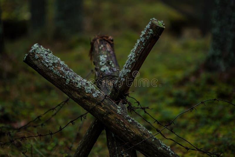 vieux trenshes en bois en Lettonie reconstruction de première guerre mondiale photographie stock libre de droits