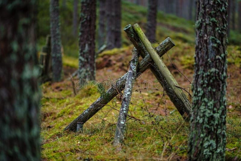 vieux trenshes en bois en Lettonie reconstruction de première guerre mondiale images libres de droits