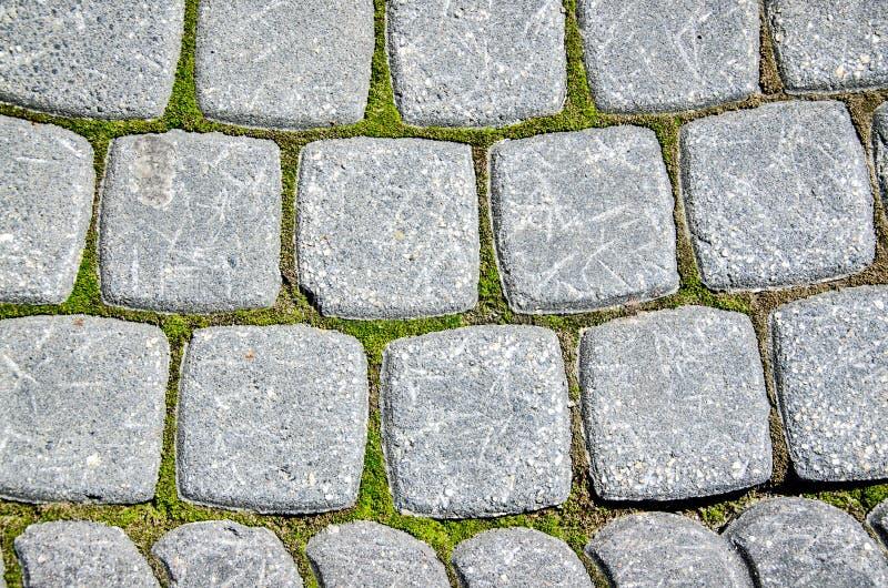 Vieux trottoir de pierre grise avec de la mousse image stock