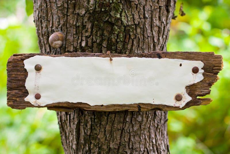 Vieux Weather-beaten signent dedans les bois photographie stock libre de droits
