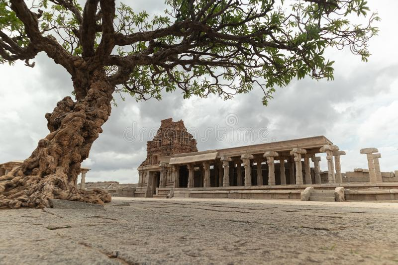 View through the Abandoned tree at Vittala Temple in Hampi, Karnataka, India royalty free stock image
