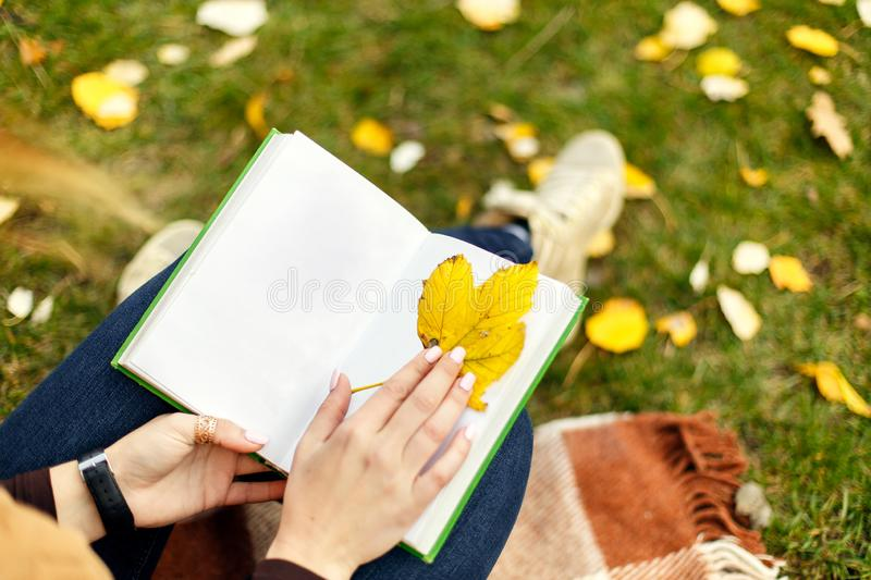 View from above on woman hands with open book using yeelow leaf like bookmark for a book, in autumn park, at green grass royalty free stock photos