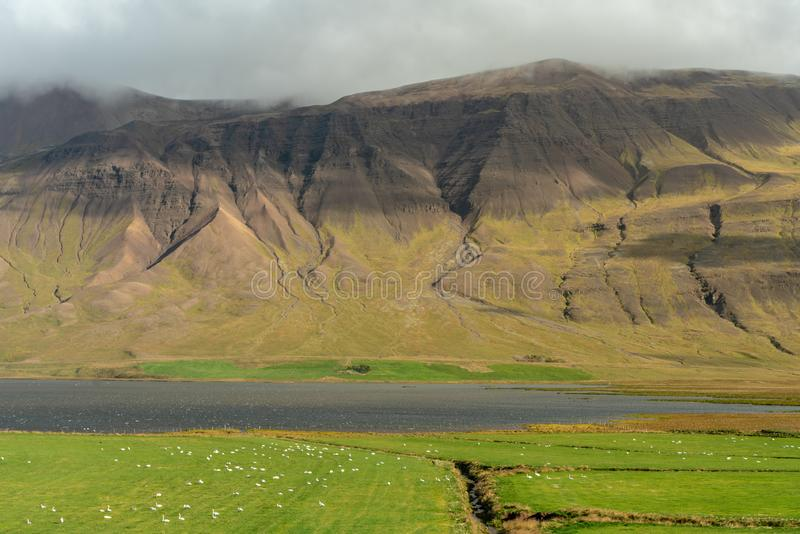 View across the fertile Vatnsdal in northern Iceland stock photography