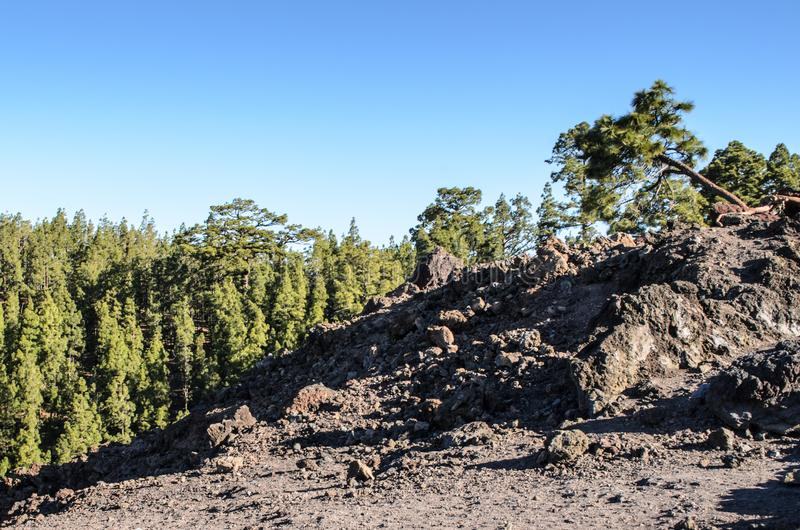 A view across lava field to Atlantic ocean from Observation deck on TF-38, .Teide National Park, Tenerife, Canary Islands, Spain. A view across lava field to royalty free stock photos