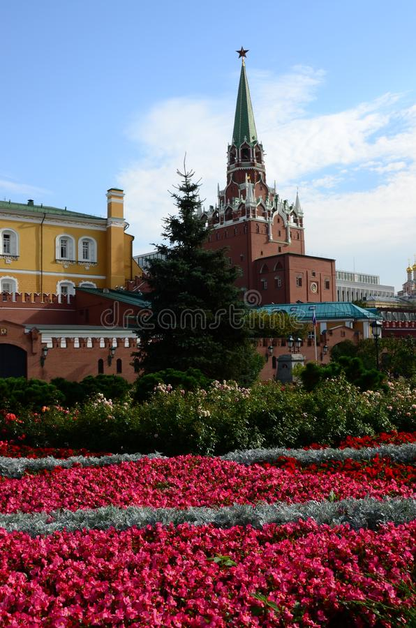 Kremlin and Alexander Gardens - Moscow. A view across the vibrant flower beds of Alexander gardens toward the Trinity tower of the Moscow Kremlin stock photos