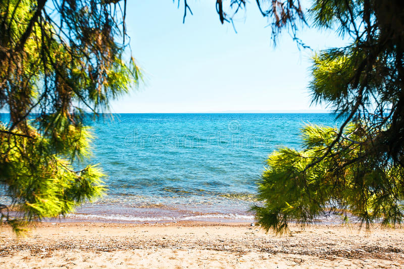 View on Aegean sea from sandy beach through green pine trees. royalty free stock images