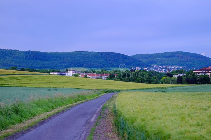 View on the agricultural fields with rye heads and road in Bad Pyrmont, Germany. View on the cultivate agricultural fields with rye heads and road in Bad Pyrmont stock photography