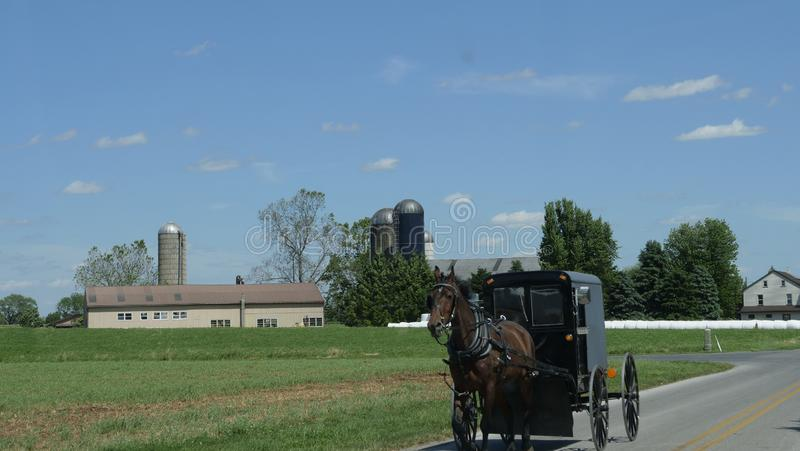 View of an Amish Horse and Buggy Going down the Road royalty free stock photos