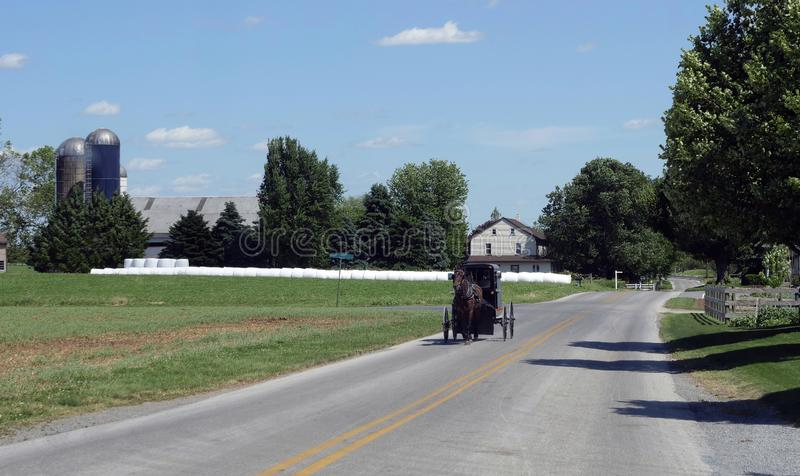 View of an Amish Horse and Buggy Going down the Road royalty free stock photography