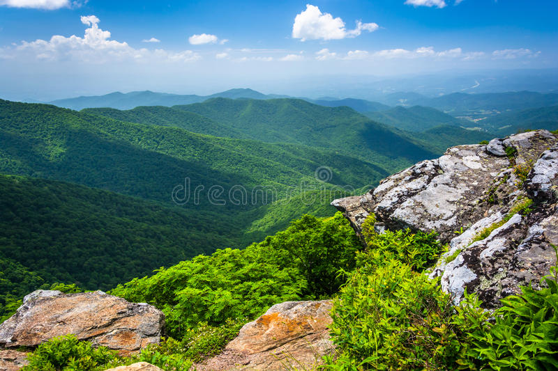 View of the Appalachian Mountains from Craggy Pinnacle, near the royalty free stock photo