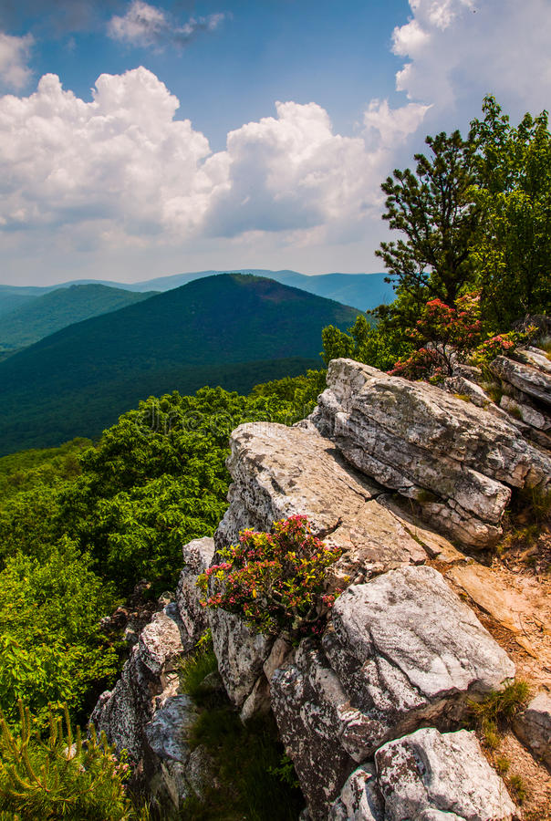 View of the Appalachians from the summit of Tibbet Knob, West Virginia. View of the Appalachians from the summit of Tibbet Knob, on the Virginia-West Virginia stock photo