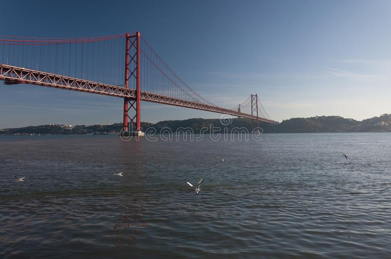 View of the 25 of April Bridge Ponde 25 de Abril with seagulls flying over the Tagus River, in the city of Lisbon royalty free stock photo