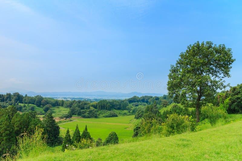 View around kikuchi castle stock photo