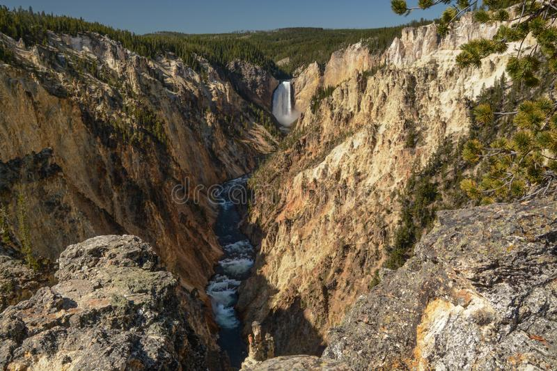 Lower Falls in the Grand Canyon of the Yellowstone royalty free stock photography