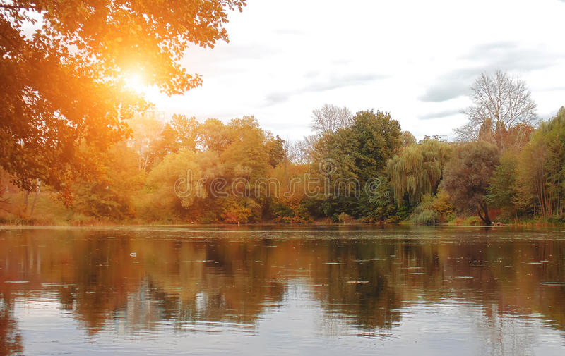 View on autumn landscape of river and trees in sunny day. Water royalty free stock images