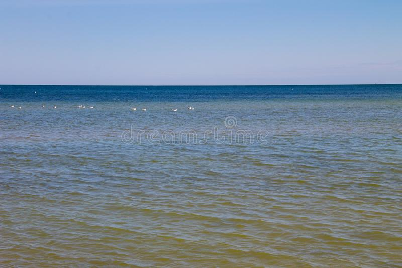 View on the Azov sea. On summer stock photography
