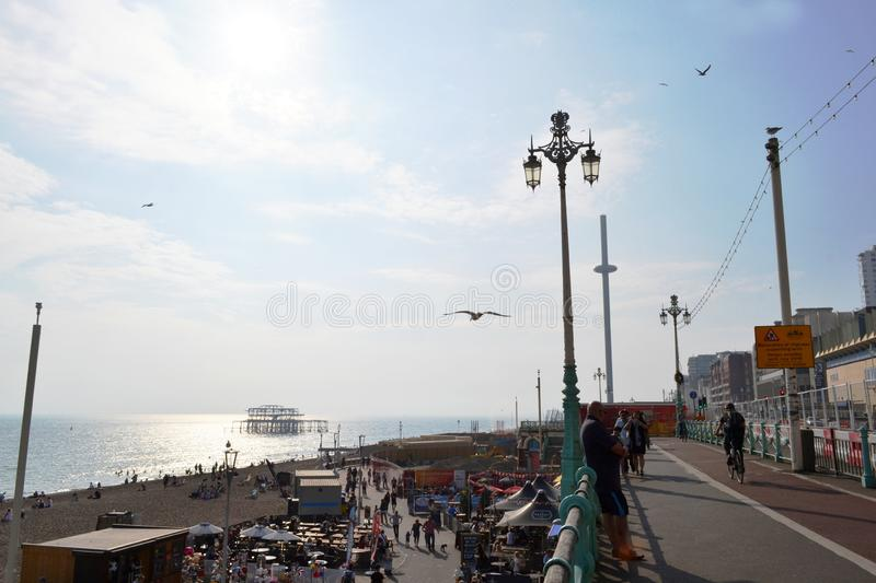 View in backlit to the beach and the sea near the observation tower British Airways i360 and West Pier in Brighton. royalty free stock photo