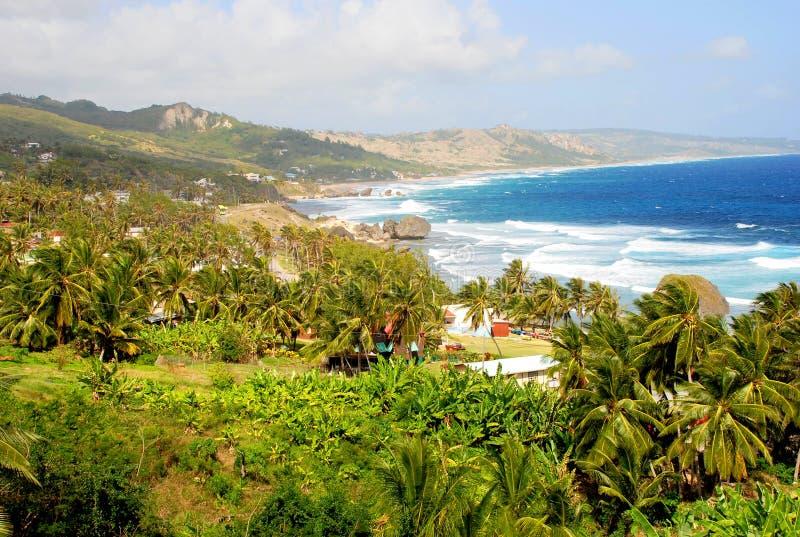 View of Barbados. View of the surfer beach Bathsheba, Barbados, Caribbean stock photography