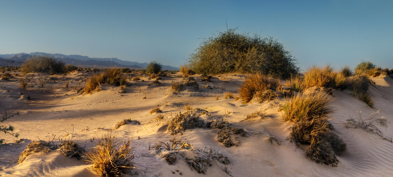 View on barchan sands in Arava valley, Israel stock photos