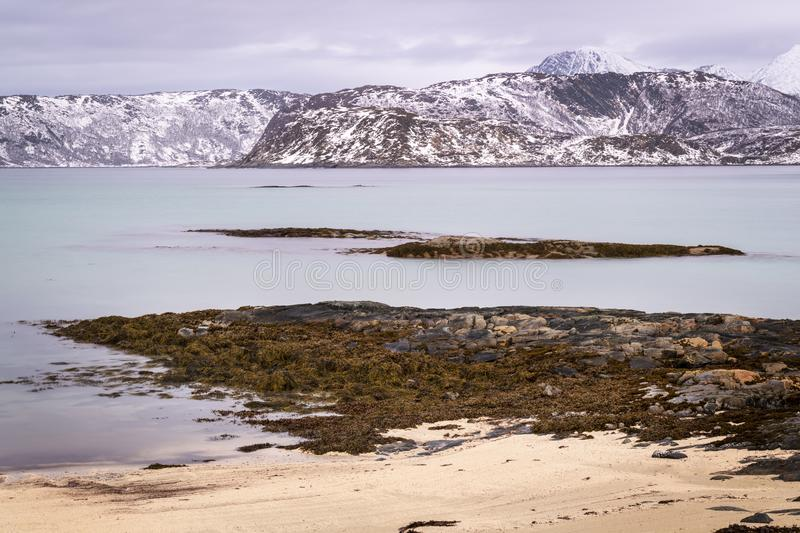 Beach at Arctic bay in Norway during Polar night. View of beach in Arctic Norway during Polar night with snowcovered mountains in background, Somoya, Norway stock photography