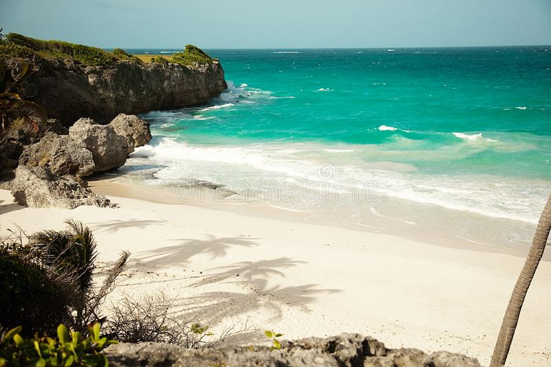 View of the beach from the cliff. White beach on the island of Barbados royalty free stock photos