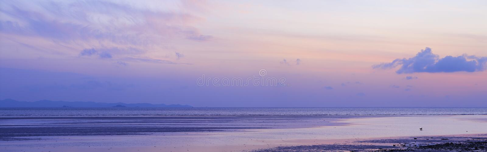 Download View Of The Beach At Low Tide Stock Image - Image of landscape, seascape: 23082535