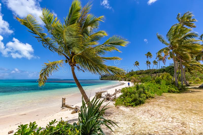 Beautiful Beach on the Island of Pines royalty free stock photos