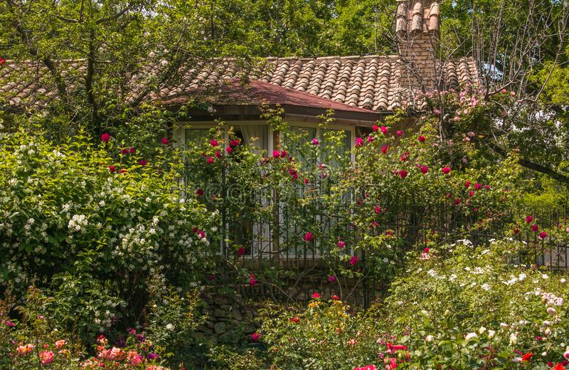 View of beautiful cottage in the rose garden royalty free stock photo