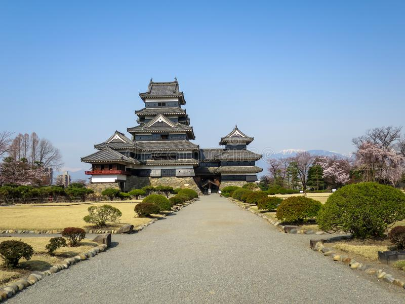 View of beautiful Matsumoto crow castle through entrance road with snow mountain and blue sky background during cherry blossom stock photos