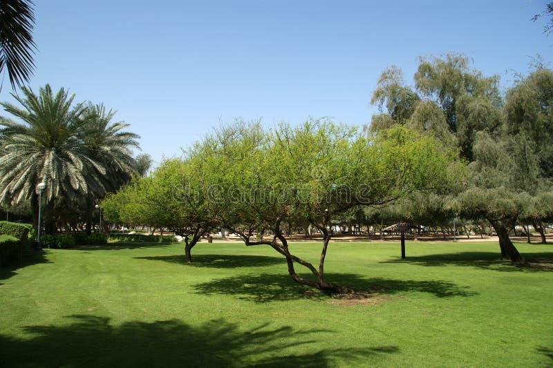Ihram Kids For Sale Dubai: View Of Beautiful Park (playground) In Dubai, UAE. Stock