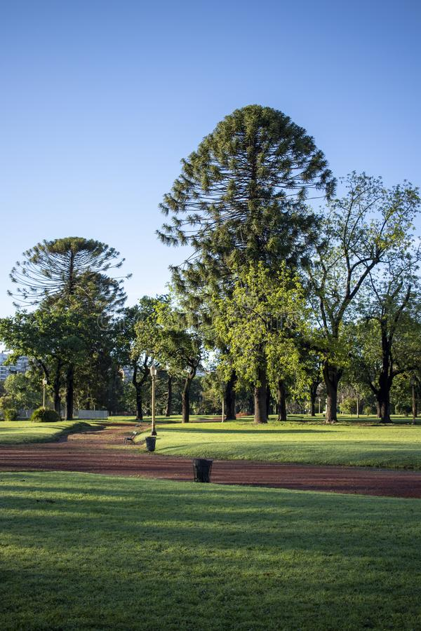Beautiful park with green areas and reddish soil, located within the city. View of a beautiful park with green areas and reddish soil, located within the city stock photo