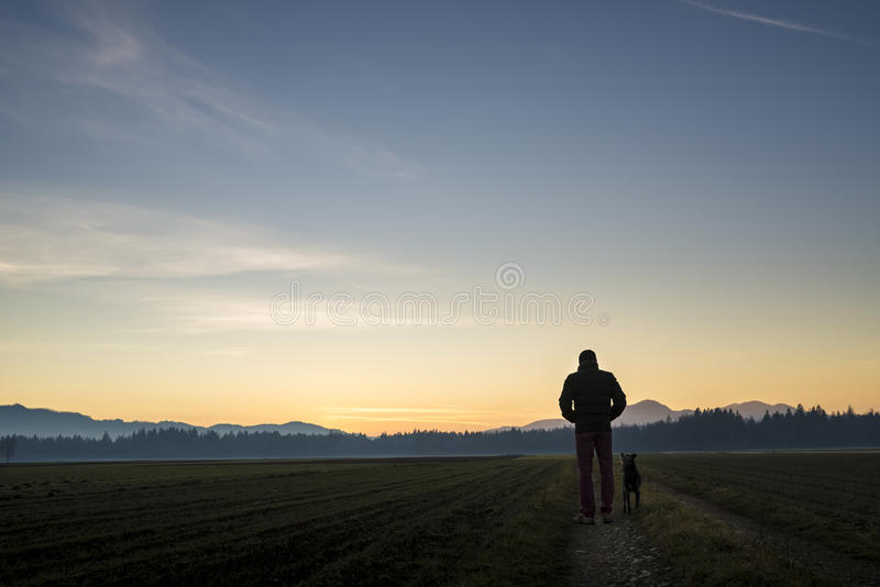 View from behind of a man walking with his black dog at dusk on. A country road leading through beautiful landscape of fields with forest in the distance and stock image