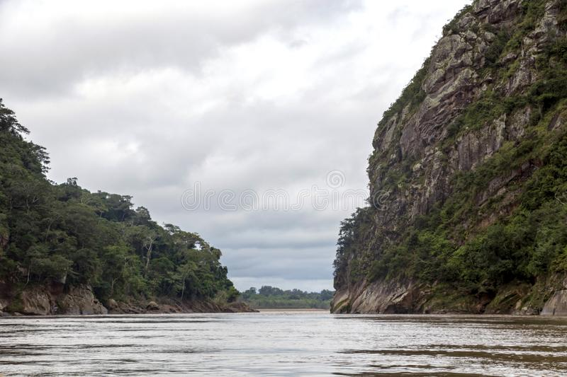 View of Beni river and rainforest of Madidi national park in the upper Amazon river basin in Bolivia, South America royalty free stock images