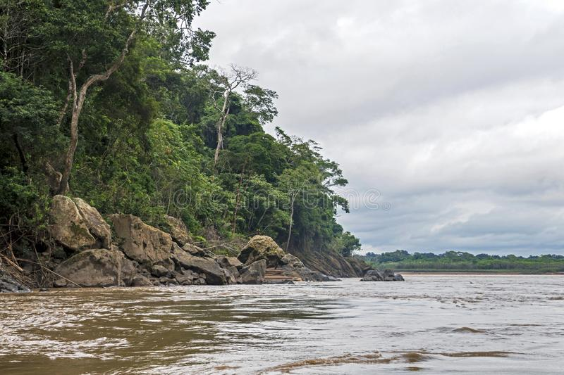 View of Beni river and rainforest of Madidi national park in the upper Amazon river basin in Bolivia, South America stock photo