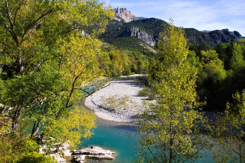 View beyond birch trees on valley with green river and mountains background - Gorges du Verdon, Provence, France stock photo