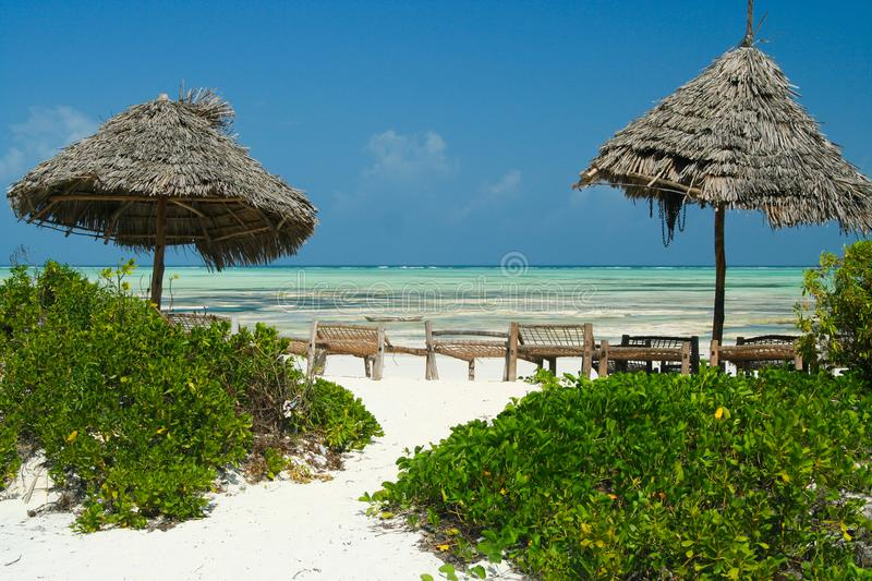 View beyond green plants, thatched umbrellas, wooden beach loungers, white sand on endless turquoise green ocean against blue sky stock photo