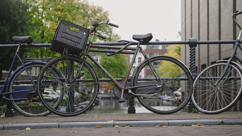 View bicycle standing in the yard on Amsterdam, sunny european autumn. Netherlands royalty free stock photos