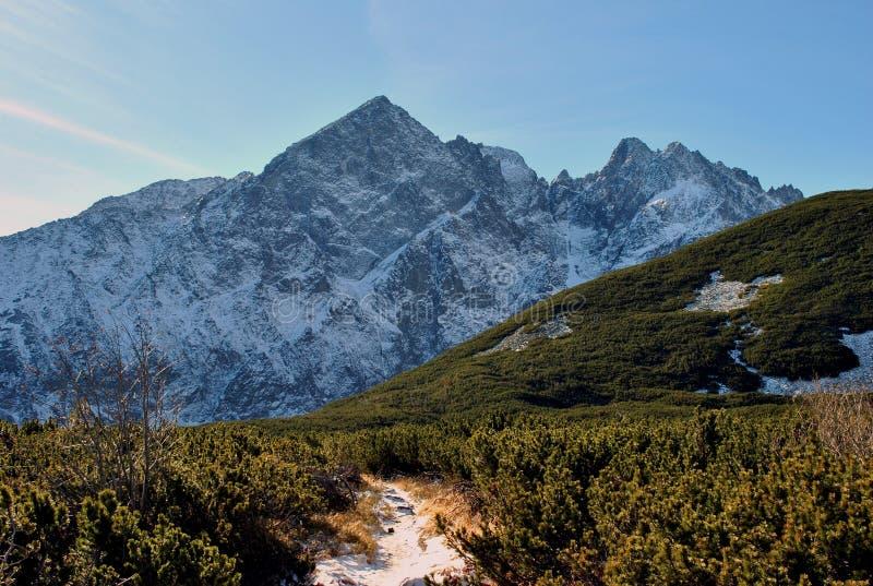 View from Biele plesa, High Tatras, Slovakia stock photo