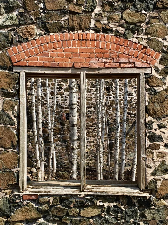 Window in the ruins of building at Delaware Copper Mine on Keweenaw Peninsula, Upper Peninsula, Michigan. View of birch trees growing inside the ruins of stock photography
