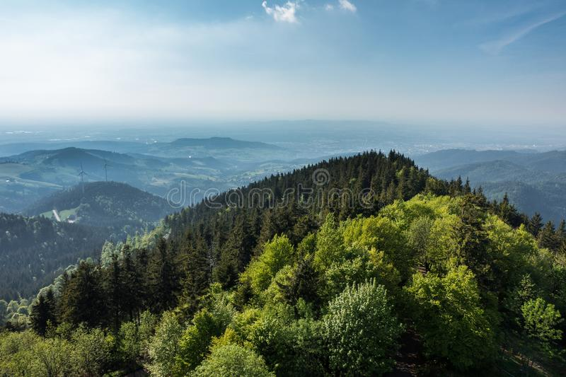 View on the black forest stock photo