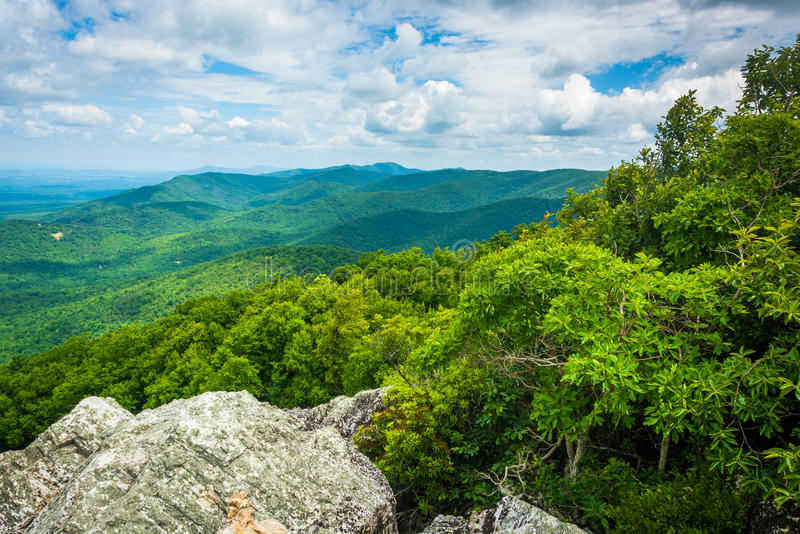 View of the Blue Ridge Mountains from Turk Mountain in Shenandoah National Park, Virginia. stock image