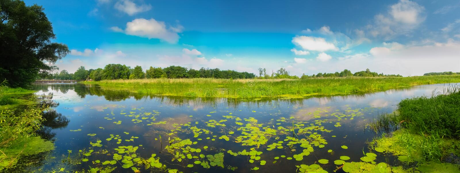 Download View On The Bog. stock image. Image of lake, country - 32065685