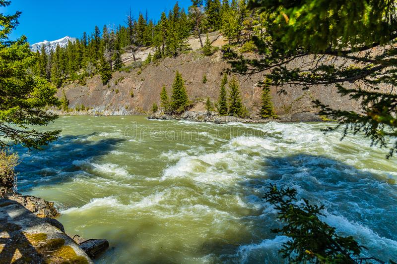 The Bow River through Banff National Park stock images