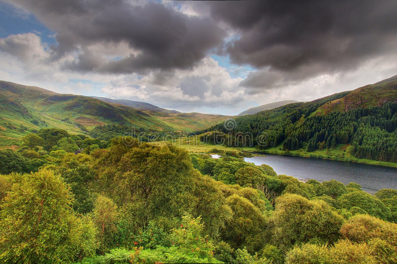 View from Bruce's Stone. Taken from Bruce's Stone overlooking Loch Trool in the Galloway Forest in Scotland stock images