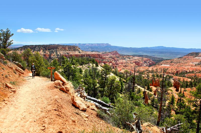View of Bryce Canyon landscape along Tower Bridge Trail stock image
