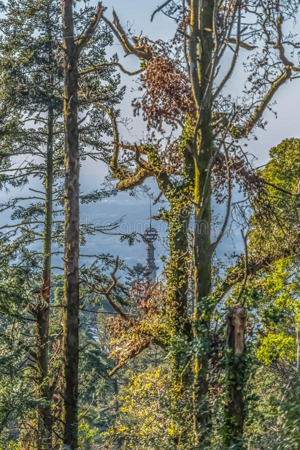 View of Buçaco palace tower in the middle of trees royalty free stock photos