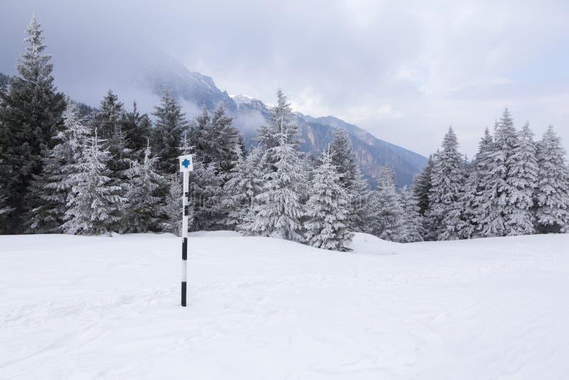 View of the Bucsoiu mountain from Carpati mountains. Romania stock photos